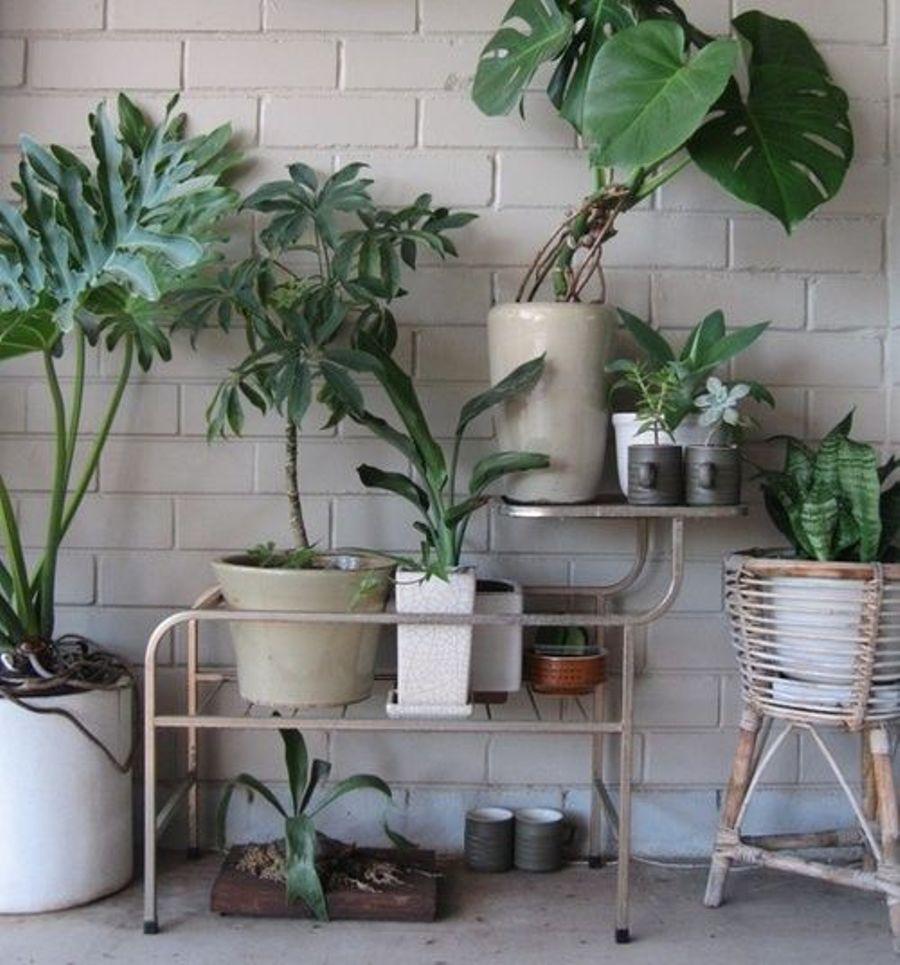 Interior flora the fashion medley - Portavasi in ferro ikea ...